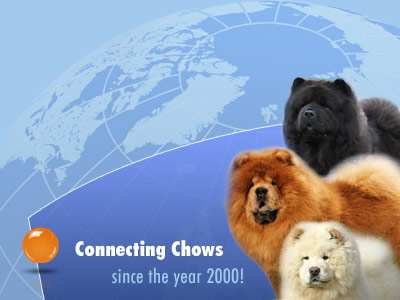 Connecting Chows since the Year 2000