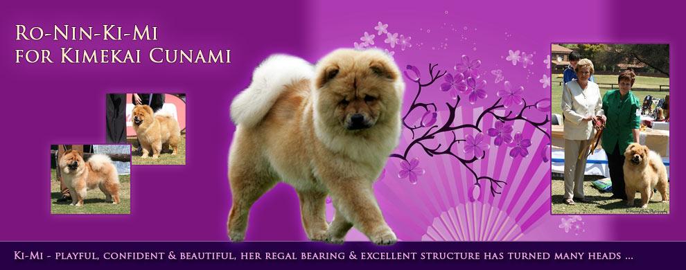 Ro-Nin-Ki-Mi for Kimekai Cunami - Kimekai Chow-Chows