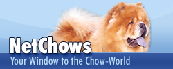 NetChows Banner 250 x 100