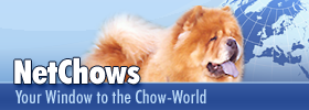 NetChows Banner 280 x 100