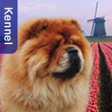 Royal Club Kennel, the Netherlands - in the Showcase