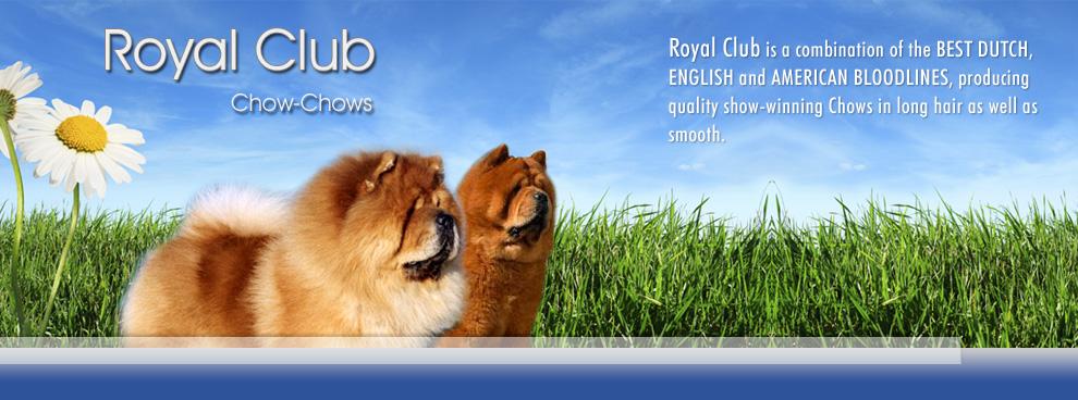 Royal Club Kennel-2