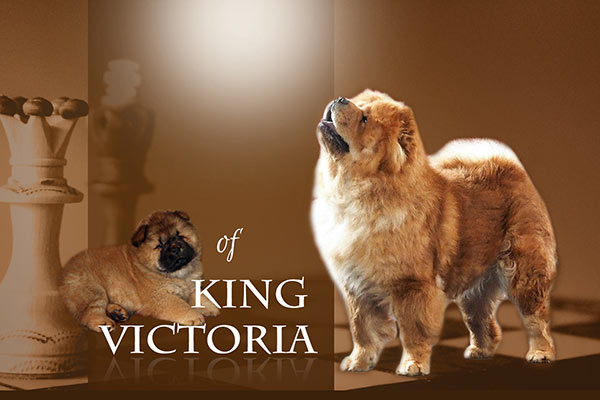 Of King Victoria
