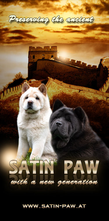 Satin Paw Smooth Chow-Chows (A)