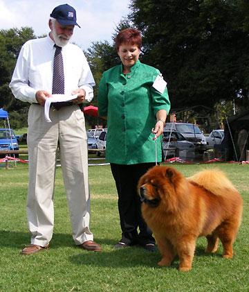 South Africa, Pretoria Kennel Club