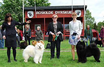 Denmark, Roskilde