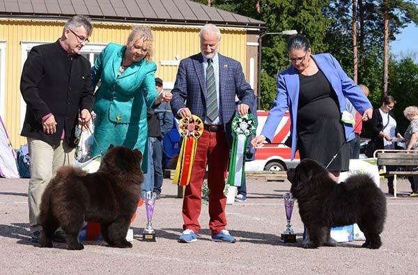 Finland, Ojakkala