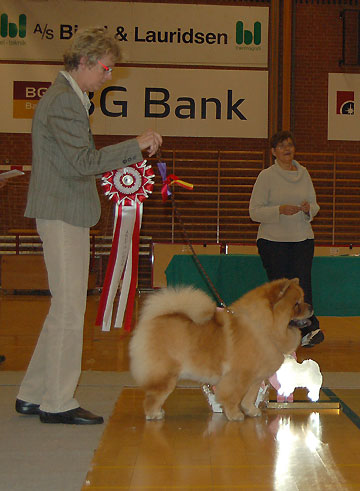 Denmark, Chows of the Year 2006