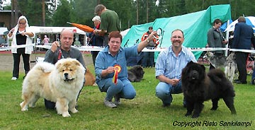 Finland, Juva (NetChows.com Chow-Chow Shownews)