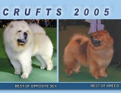CRUFTS 2005